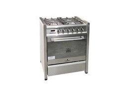 Nomalon Imports supplies EV70 gas/electric upright cookers