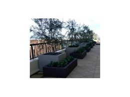 Planter boxes available from H2O Designs