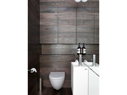 Rogerseller Catalano Sfera wall hung toilet offers soft lines and circular form