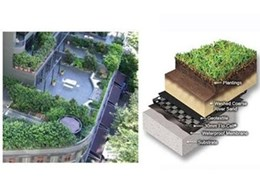 Rooftop gardens - reclaiming urban spaces with ecological and economical benefits