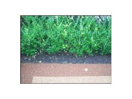 Rubber Bark/Mulch available from Synthetic Grass & Rubber Surfaces (Aust)