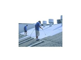 Safe asbestos roof treatment