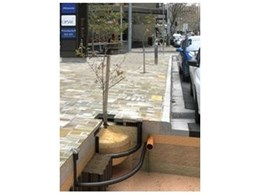 Saving water in urban designs using Tree Pits