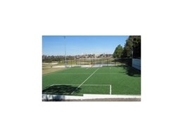 Synthetic Grass & Rubber Surfaces' synthetic grass at Willoughby Council
