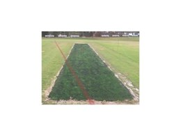 Synthetic grass rubber infilled cricket wicket covers from Synthetic Grass & Rubber Surfaces (Aust)