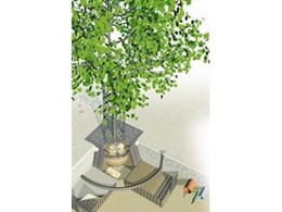 Tree products with CAD concepts from Arborgreen Landscape Products