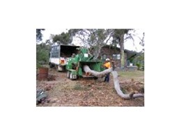 Tree removal services from All Hills District Tree Removal