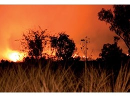 Viridian PyroGuard ideal for protecting homes against bushfire threat
