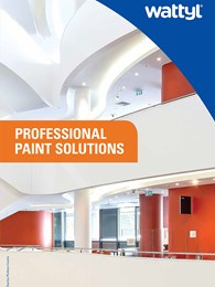 Professional Paint Solutions