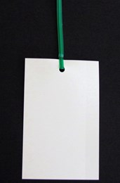 Tie-On Plastic Tags (90 mm x 62 mm)