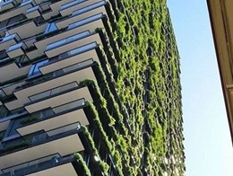 Do green walls automatically make your building green?