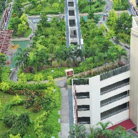 Green roofs and walls, we have them covered