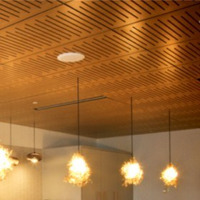 Supatile 10 fully accessible ceiling panels