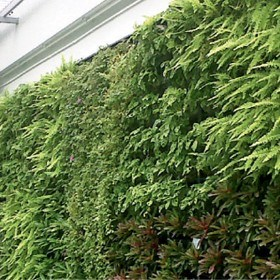 Gardens go vertical with Atlantis Gro-Wall®