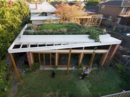 Architeam CPD Seminar explores what to consider when planning a green roof