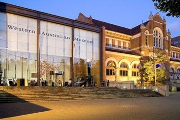 Perth's Western Australia Museum is set to receive a $428 million overhaul.