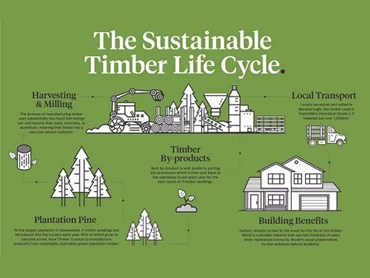 Timber lifecycle