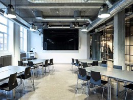 Troldtekt acoustic panels ensure work comfort in industrial themed office