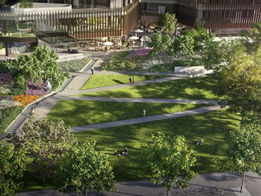 The proposed design for Melbourne Square parklands by Taylor Cullity Lethlean. Image: Taylor Cullity Lethlean