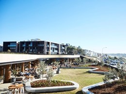 New Harbord Diggers wins national recognition at Urban Developer Awards