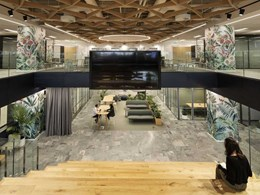 Woven Supawood Maxi Beam ceiling floats over 'urban oasis' workspace