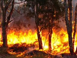 Australian Bushfire Building Conference program released