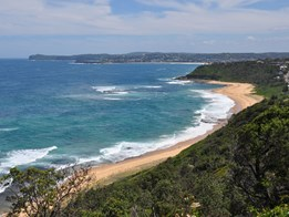 NSW releases Indigenous land planning ideas