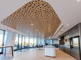 PTID's bubble patterned ceiling solves workplace noise