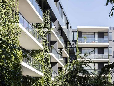Vertical greening systems have a cooling effect on buildings