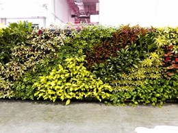 Elmich green wall system adds refreshing touch to Green Living 2016