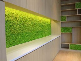 Vertical moss gardens - the latest design trend in homes and offices