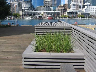 Innowood's composite timber at Sydney Harbour's Wharf 8 & 9