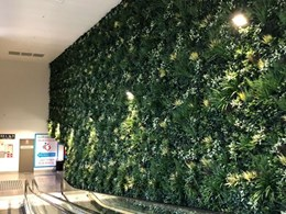 Feature green wall adds wow factor to new Sydney shopping centre
