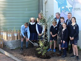 Our green future being planted by the future leaders of NSW