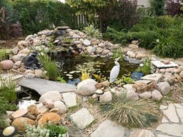 What's the best water feature for your project?