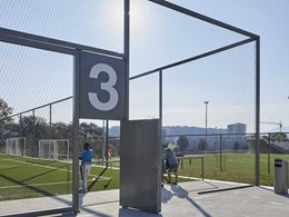 Webnet mesh for green walls and sportsgrounds